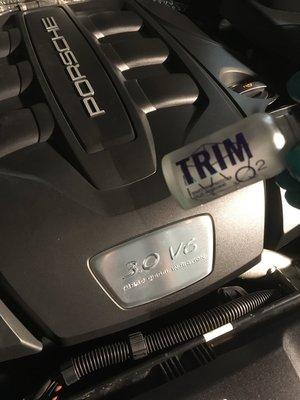 7.0 TRIM motor.JPG